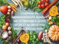 """Седмица на здравословното хранене - """"Вкусна есен"""" - малка снимка"""