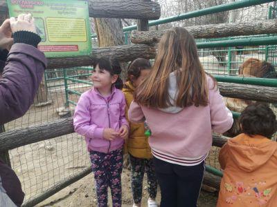 """На гости при делфините - група ПГ5 """"Пчеличка"""" - ДГ Звездица-Зорница - Бургас"""
