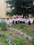 """""""Еньовден"""" - празник в детската градина - ДГ Звездица-Зорница - Бургас"""